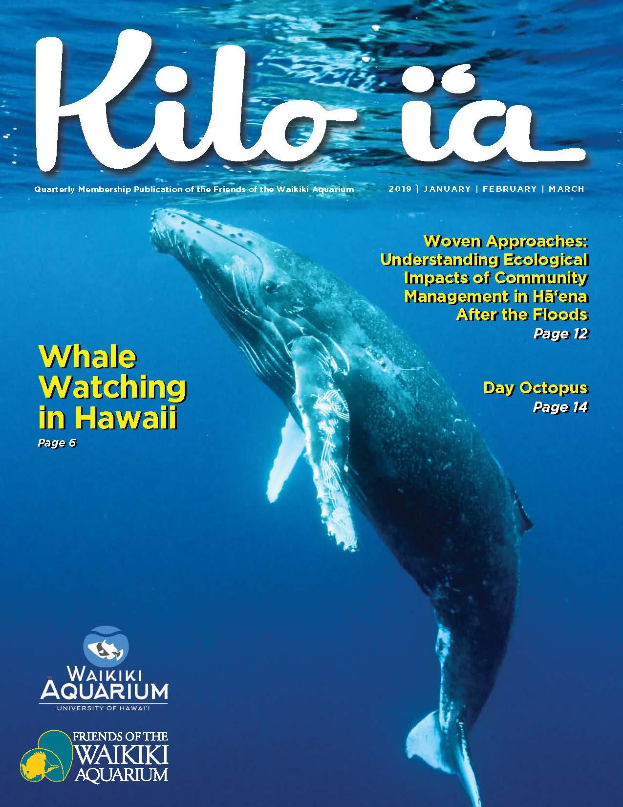 Kilo i'a magazine 2019