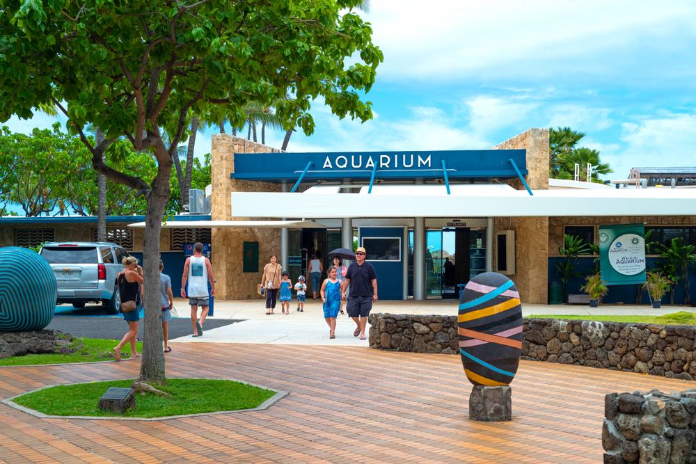 About the Waikiki Aquarium